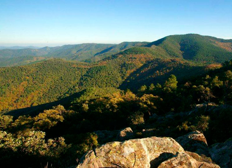 The Massif des Maures mountains