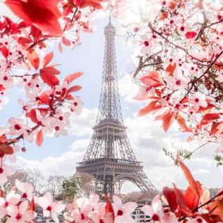 Profitez des vacances scolaires pour (re)découvrir la France. Embarquez à bord de nos vols directs pour Paris et profitez de délicieux moments en famille ou entre amis autour de nos plus beaux monuments. . . 📷 @loiclagarde . . #Voyage #Vacances #découvertes #ToulonVousOuvreLeMonde  #instatraveling #Paris #France #Toureiffel #Eiffeltower #worldheritage #landmark #monument #architecture #spring #blossom #bloom #petals #topparisphoto #parismonamour #igersparis