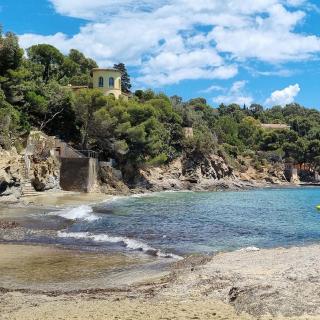🌻 Pour aller dans le Golfe de Saint-Tropez, passez par le bord de mer et faites une pause au Rayol-Canadel-sur-Mer 🚏 !  💡 Vous pourrez découvrir Le Domaine du Rayol @domainedurayol. Il s'agit d'un espace naturel protégé de 20 ha 🌵 🌺, qui vous fera voyager à travers 11 paysages d'ici et d'ailleurs : Canaries, Californie, Afrique du Sud, Australie, Chili, etc.  🚘 Depuis l'aéroport, comptez 45 minutes de route  📸 On remercie Victor, alias @fabry_forte, pour ce joli cliché !